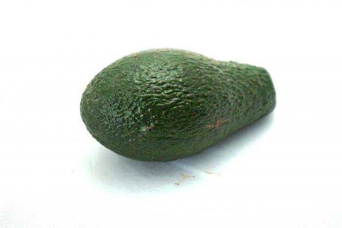 Avocado - www.chefsstuff.de