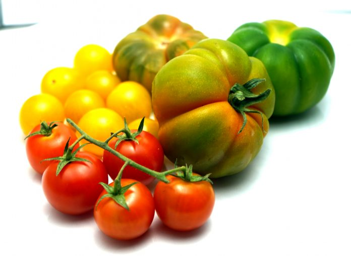 Tomaten Marinda Tomate - www.chefsstuff.de