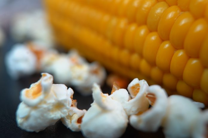 Popcorn - www-chefsstuff.de